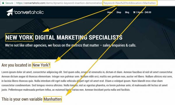 dki-example-wordpress-custom-var